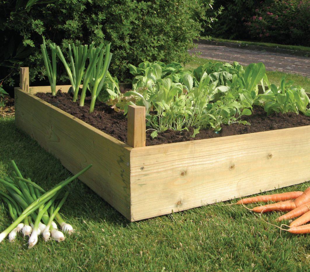 Raised Bed Kit 1m x 1m Raised garden beds, Raised garden