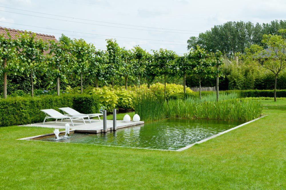 Tuin tuinarchitect rik hiergens - Gartengestaltungsideen mit pool ...
