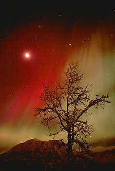 Orange Aurora Borealis