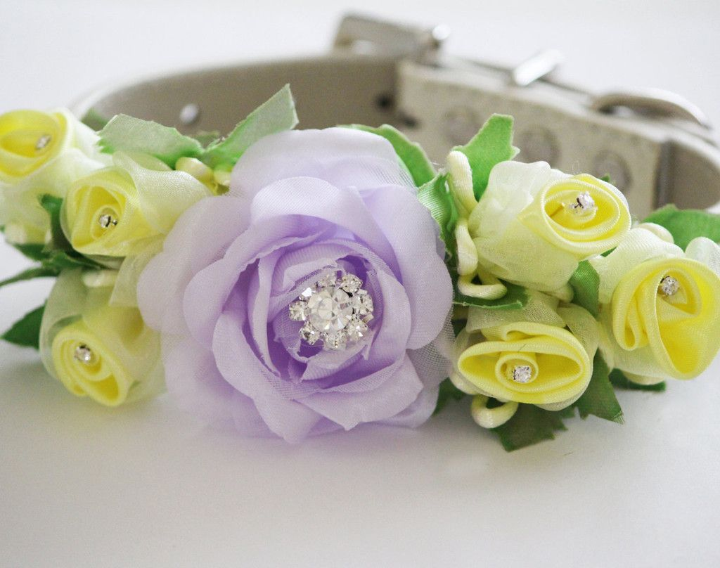 Lilac and yellow wedding dog collar lavender yellow flowers with lilac and yellow wedding dog collar lavender yellow flowers with rhinestonespet wedding accessory dhlflorist Choice Image