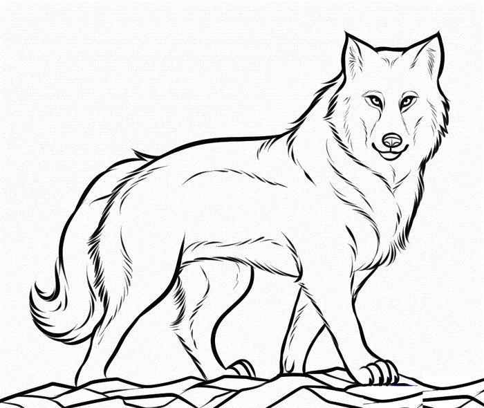 Detailed Wolf Coloring Pages from Printable Wolf Coloring ...