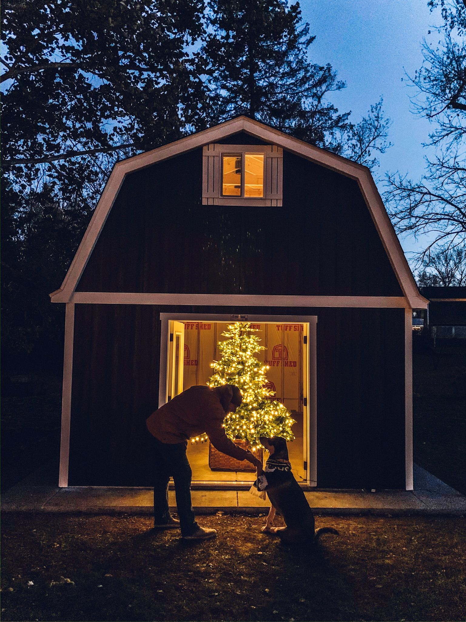A We Shed with Kindred Vintage Tuff shed, Tree