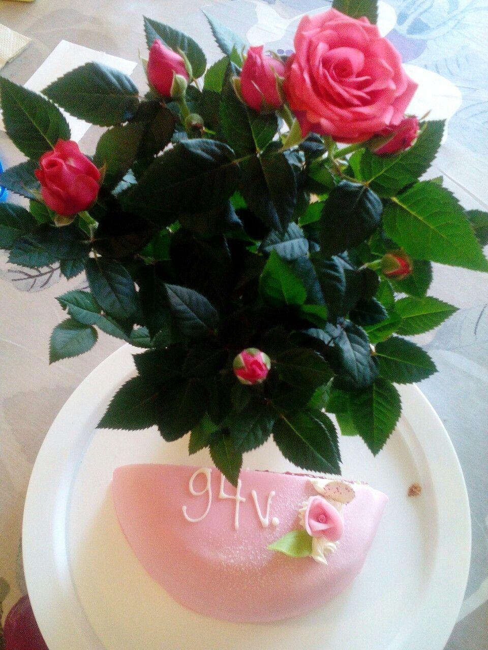 Pinkkiä ihanaa