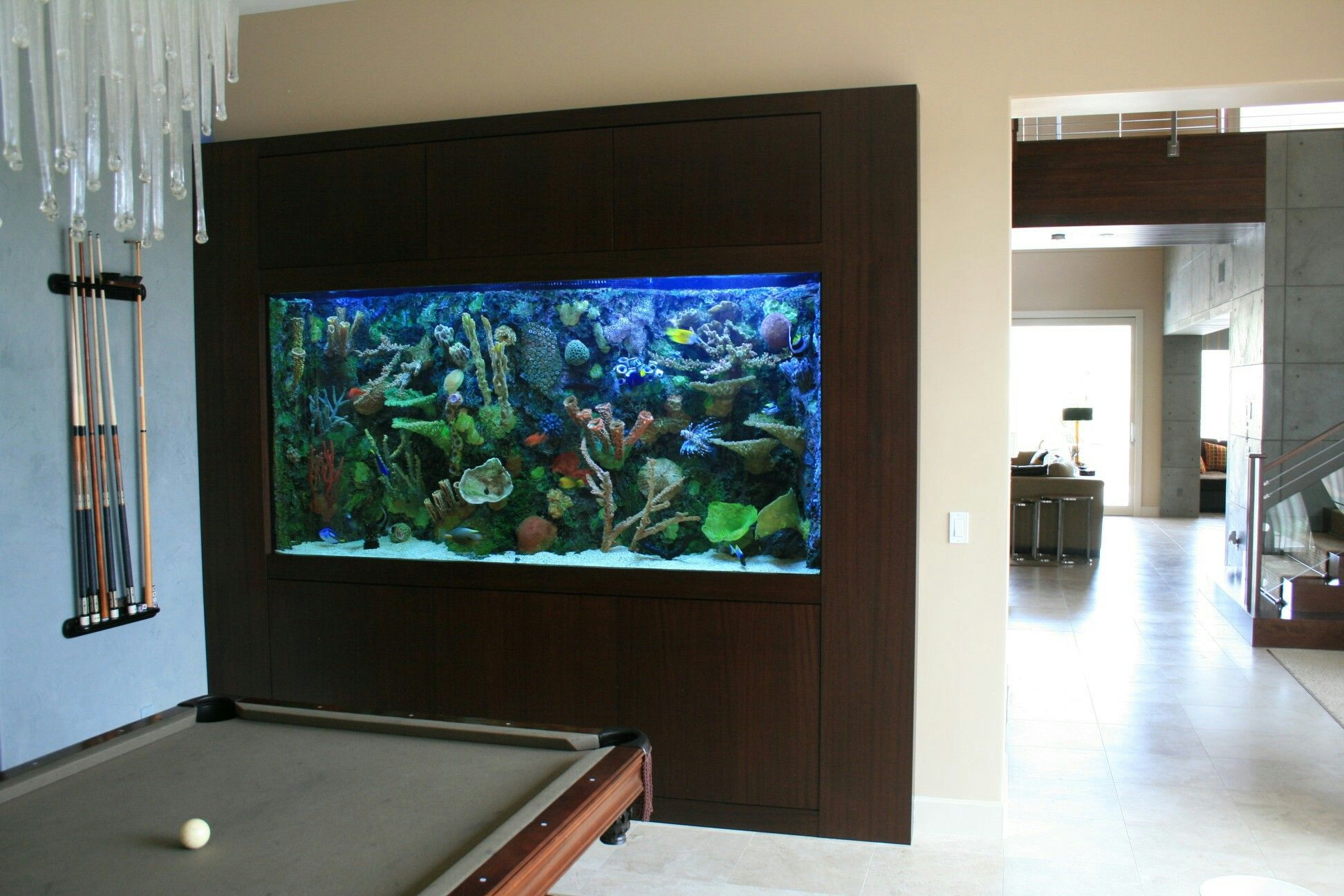 In Wall 600 Gallon With Faux Reef Aquarium Maintenance Las Vegas