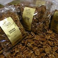 Fresh golden Mammoth pecan halves. Perfect for cooking Thanksgiving dishes, baking Mom's pecan pie, and as salad toppers.