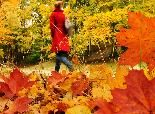 50 Stunning Places Around the World to See Fall Color (PHOTOS) | The Weather Channel