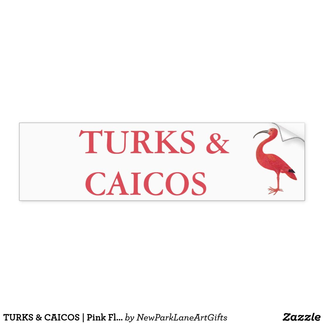 Turks Caicos Pink Flamingo Bumper Sticker Bumper Stickers Bumpers Strong Adhesive [ 1106 x 1106 Pixel ]