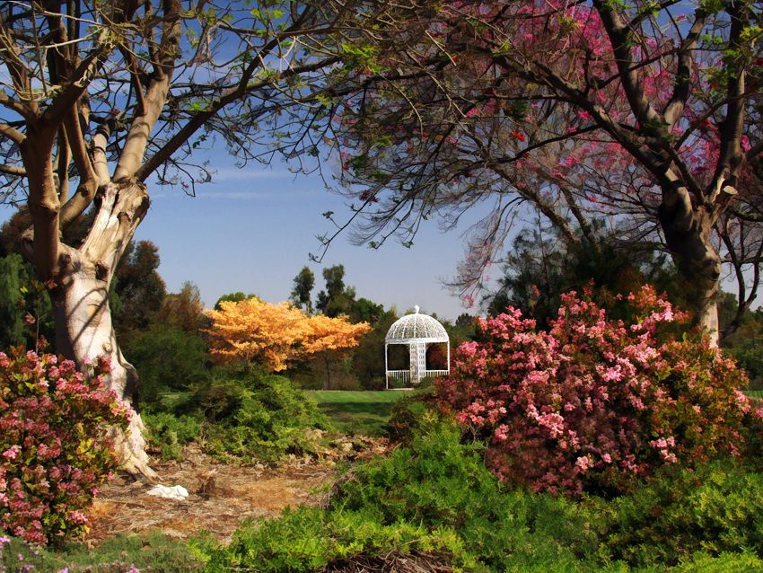 Spring at the Botanic Garden Botanical gardens, South