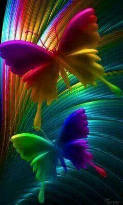 Butterflies Rainbow Butterflies Rainbow Color Me