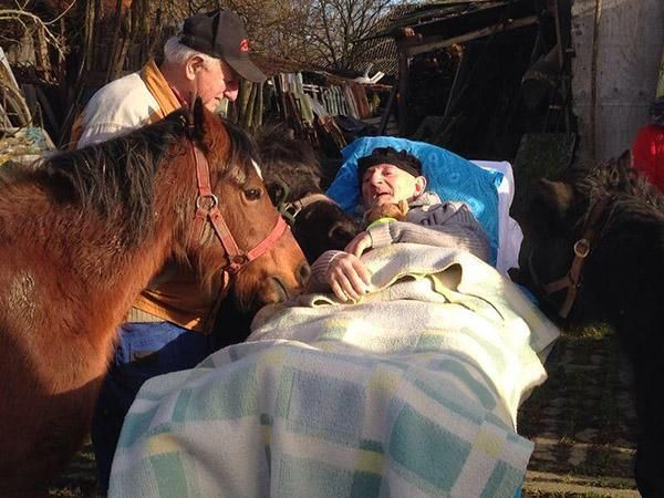 His last wish was to see his ponies pic.twitter.com/aHAR8rpPcu