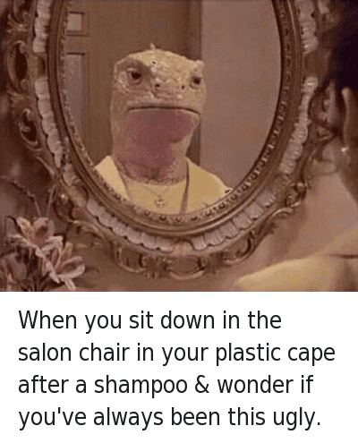 Mfw Meme Caption When You Sit Down In The Salon Chair Your Plastic Cape After A Shampoo