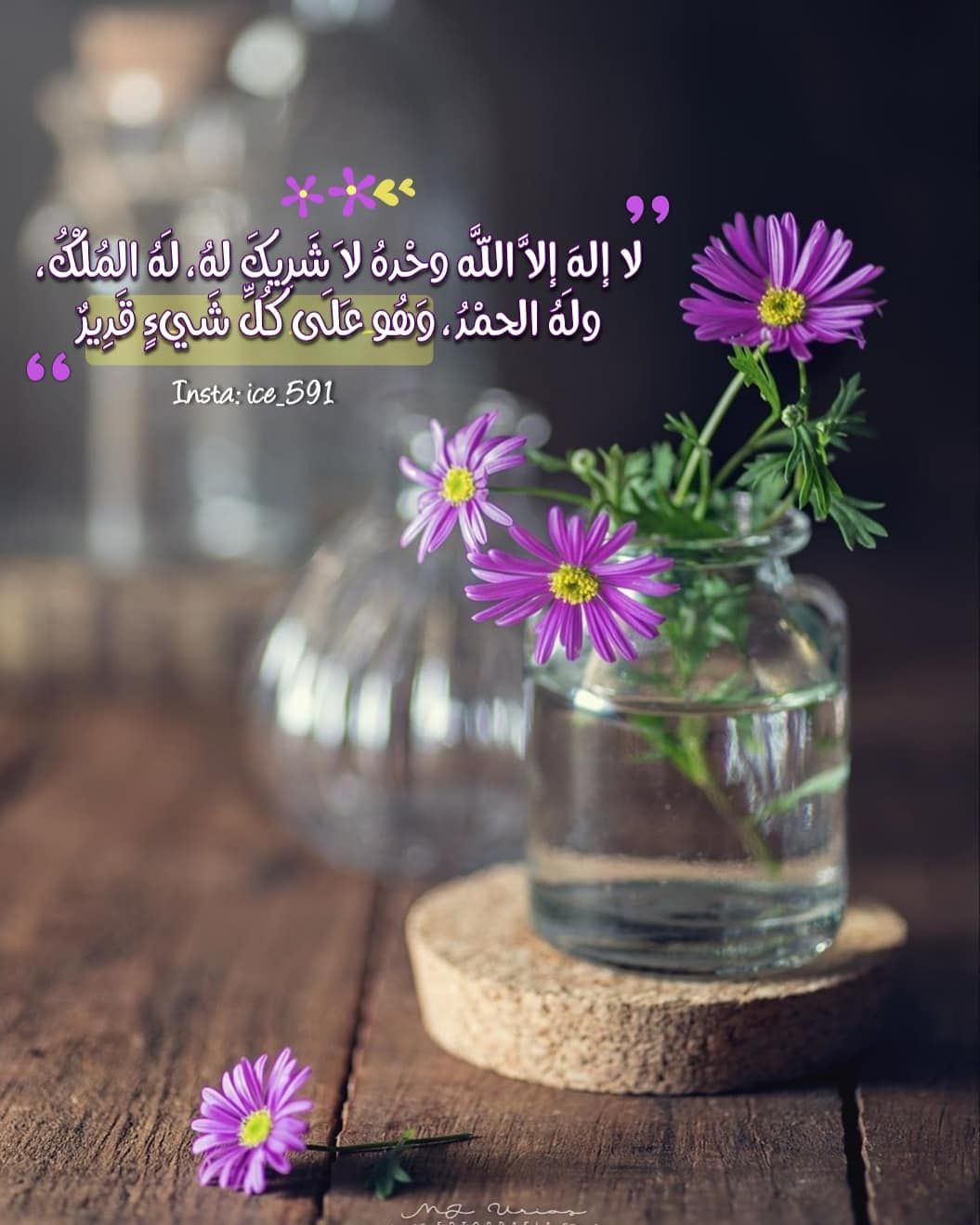 49 Likes 3 Comments S A M A H Ice 591 On Instagram لا إله إلا الل ه In 2020 Good Morning Images Flowers Good Morning Images Morning Images