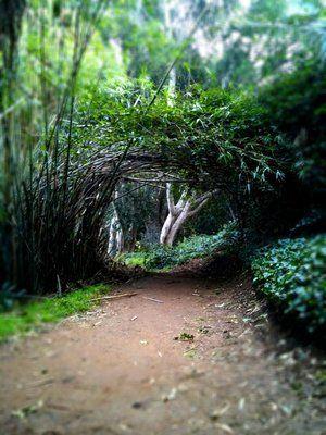 UCR Botanical Gardens Location.