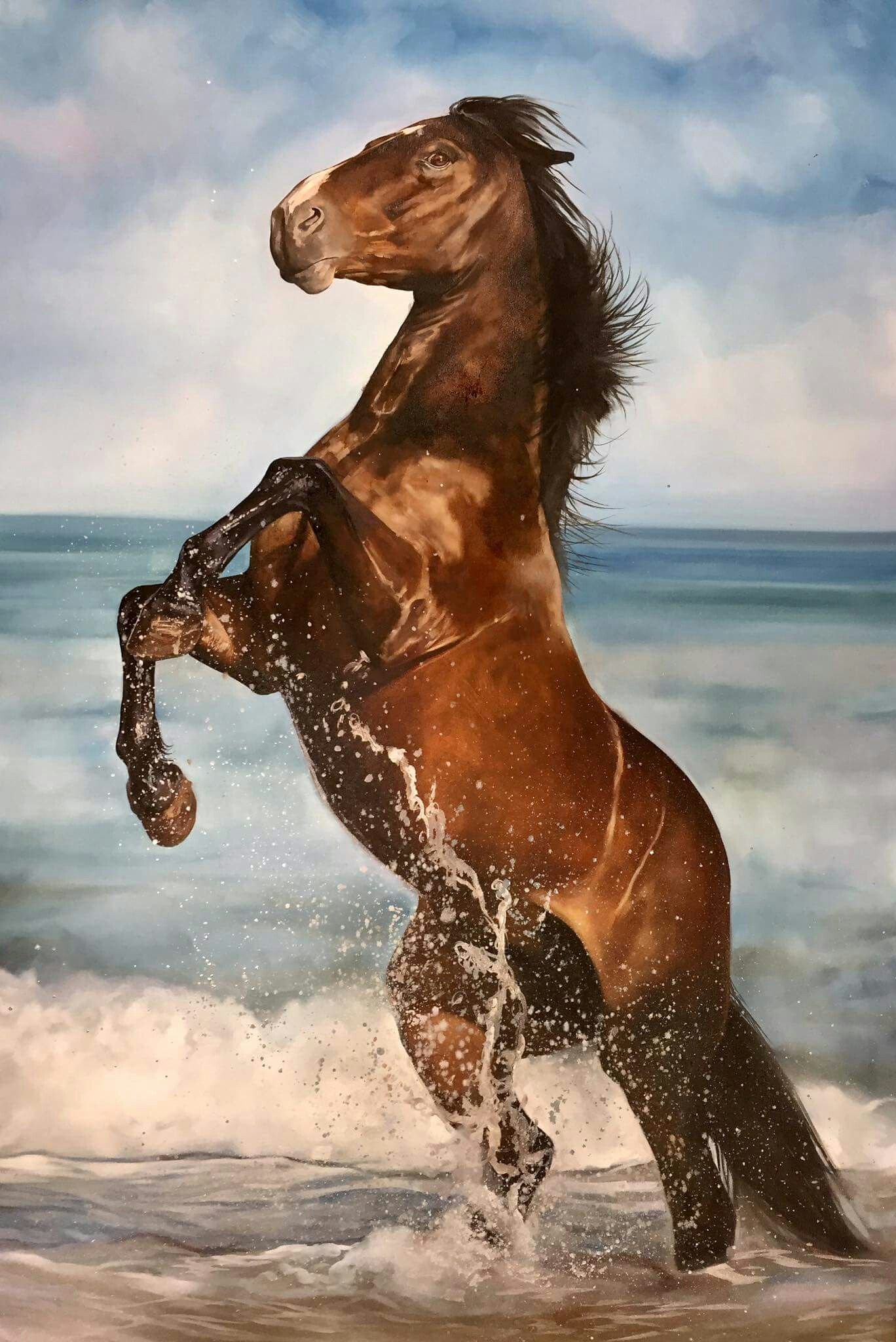Pin By Jamie Mcafee On Horses Animals Beautiful Pretty Horses Big Horses