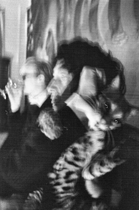 Dali, Warhol and pet...