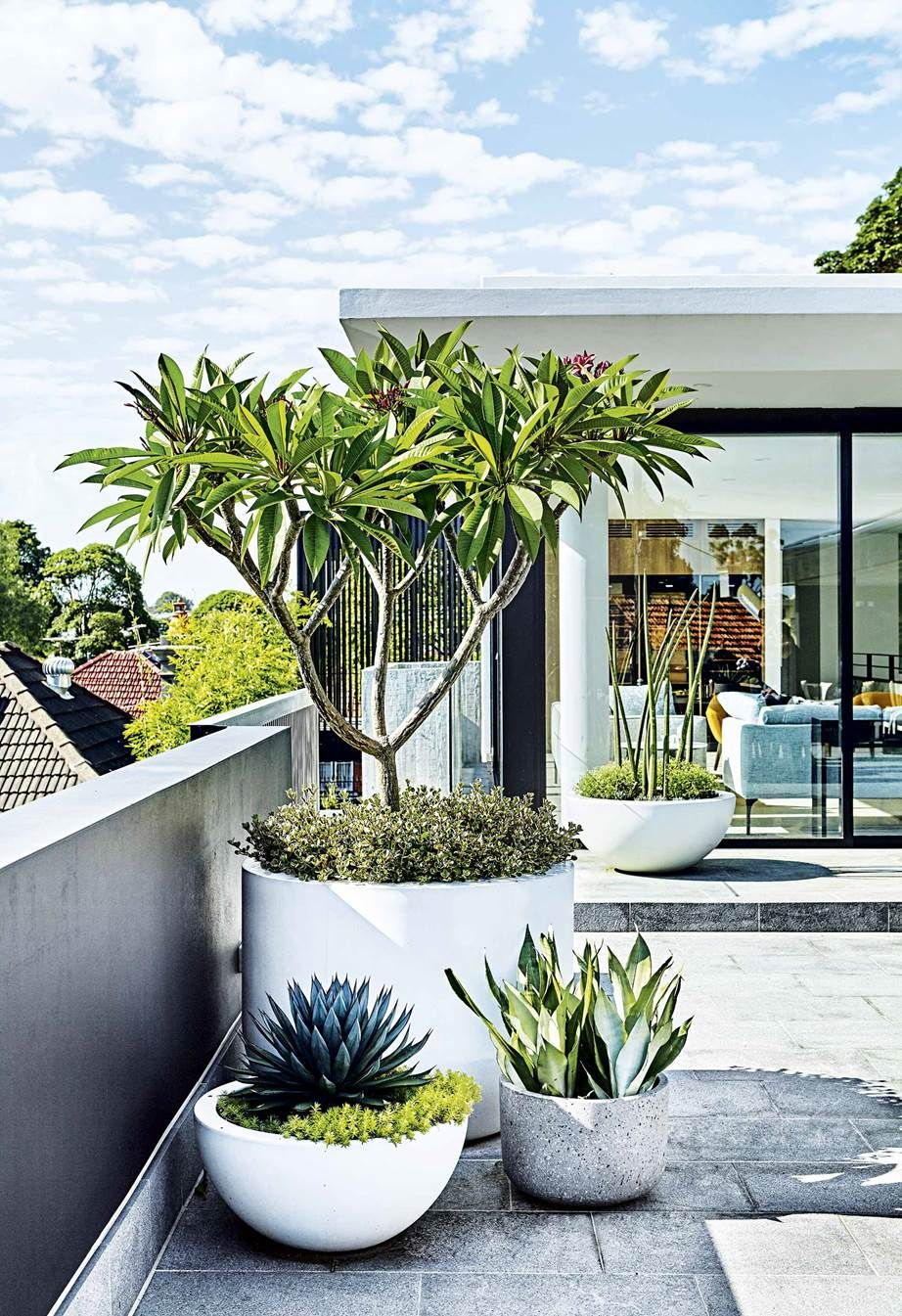 This rooftop terrace features a low-maintenance garden #rooftopterrace