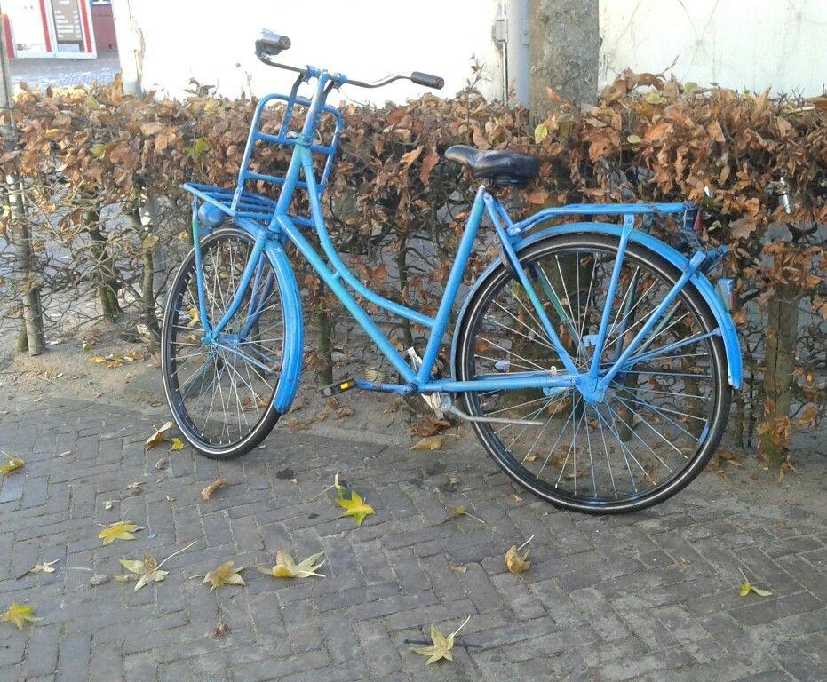///\ bleu bike 》emmen