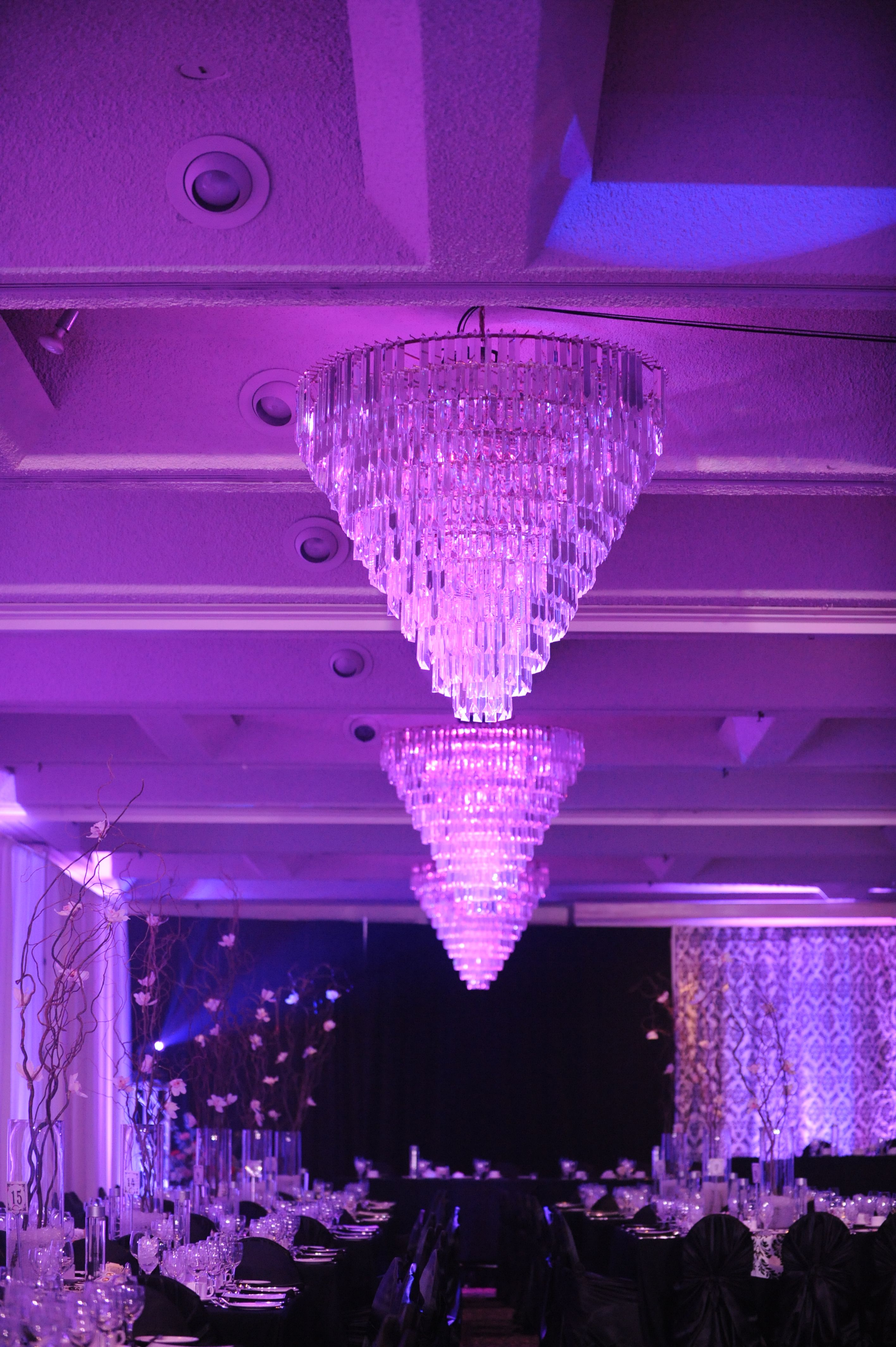 Ballroom chandeliers chi weddings pinterest carriage house ballroom chandeliers aloadofball Choice Image