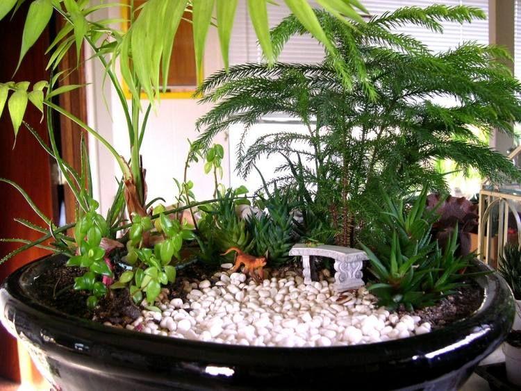 Ein kleiner dschungel mit affe und sitzbank im schatten der palmen miniaturgarten mini - Garten mit palmen gestalten ...
