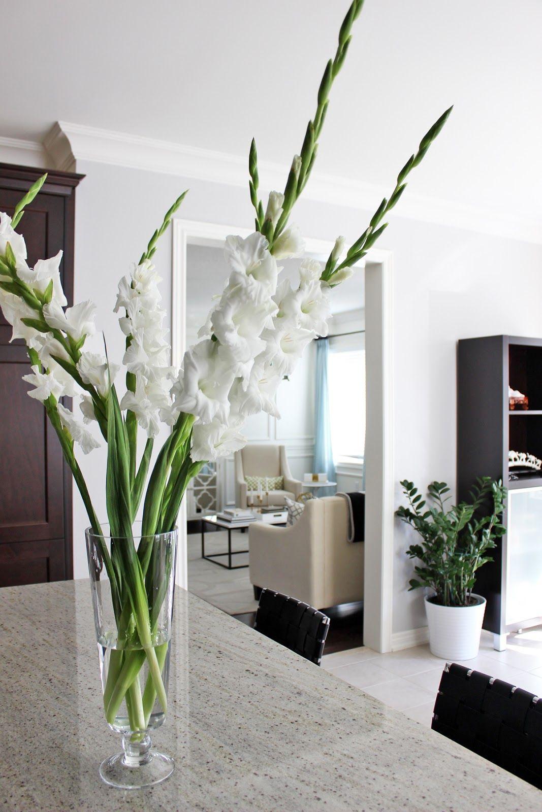 Kitchen, white gladiolus