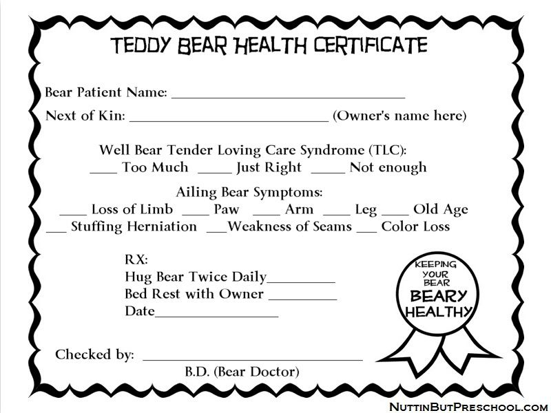 Teddy Bear Health Certificate  Kids    Teddy Bear