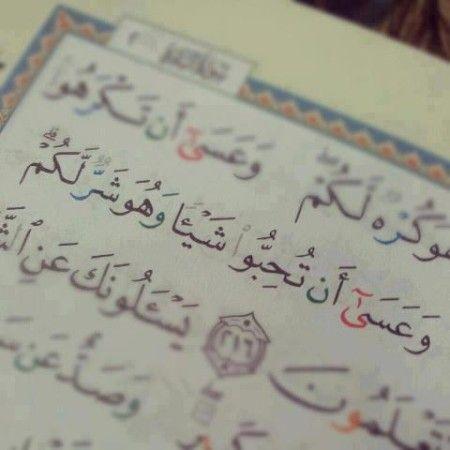 صور ايات من القرآن الكريم مكتوبة ميكساتك Quran Quotes Love Quran Book Islamic Quotes Quran