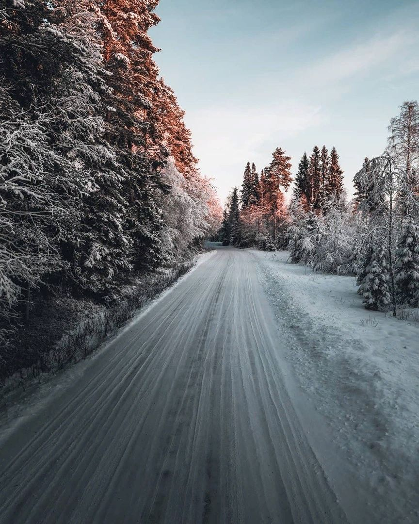 Mountains Snow Forest Winter Nature Winter Nature Winter Scenery Winter Forest
