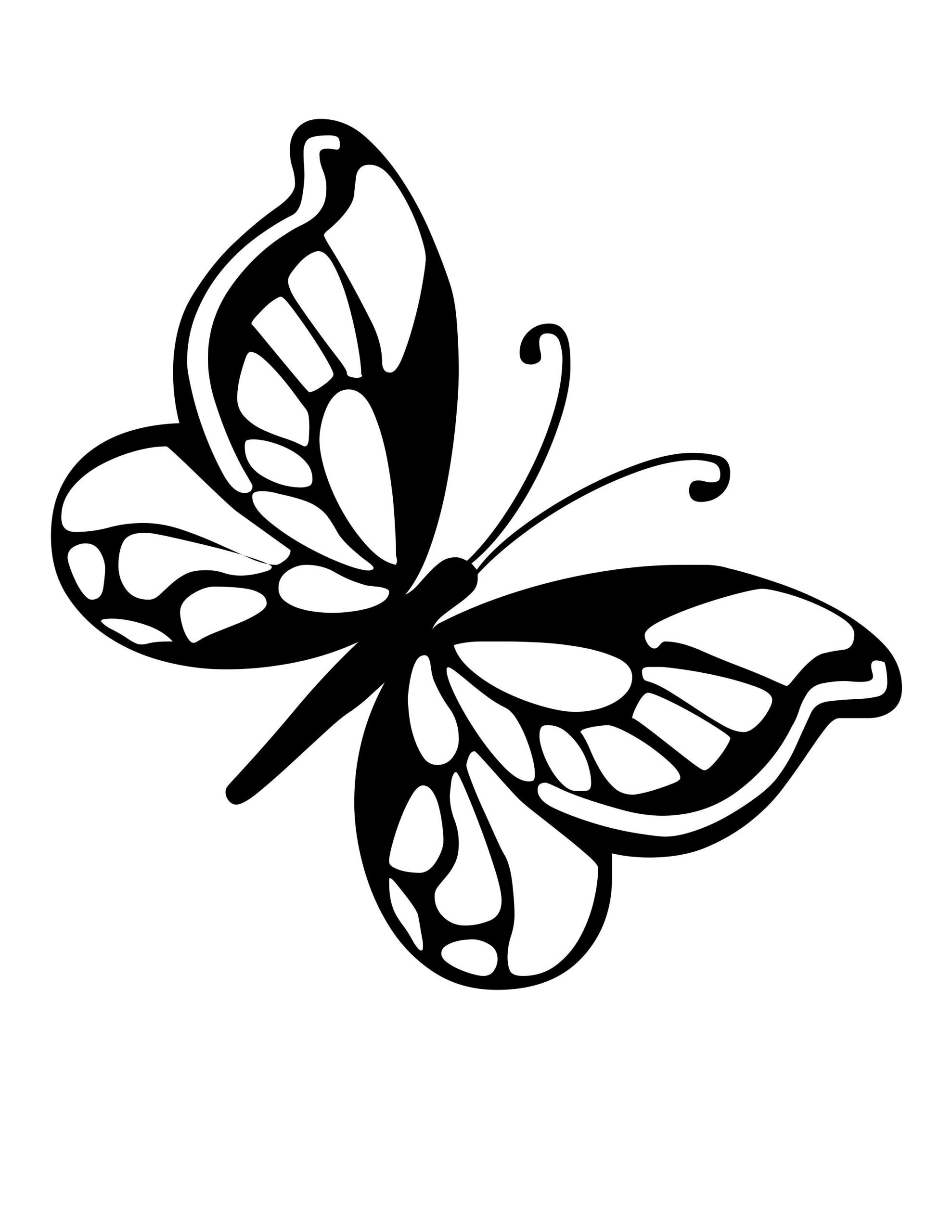 Butterfly Wing Coloring Page Youngandtae Com Butterfly Coloring Page Butterfly Drawing Butterfly Stencil