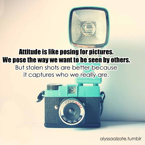 This Just Clicks Quotes About Photography Photography Quotes Funny Camera Quotes