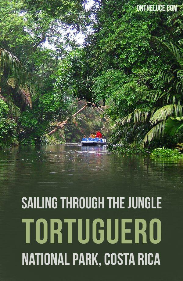 Sailing through the jungle in Tortuguero National Park