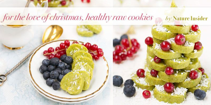the global girl top 5 raw vegan christmas dessert recipes healthy cookies by nature insider