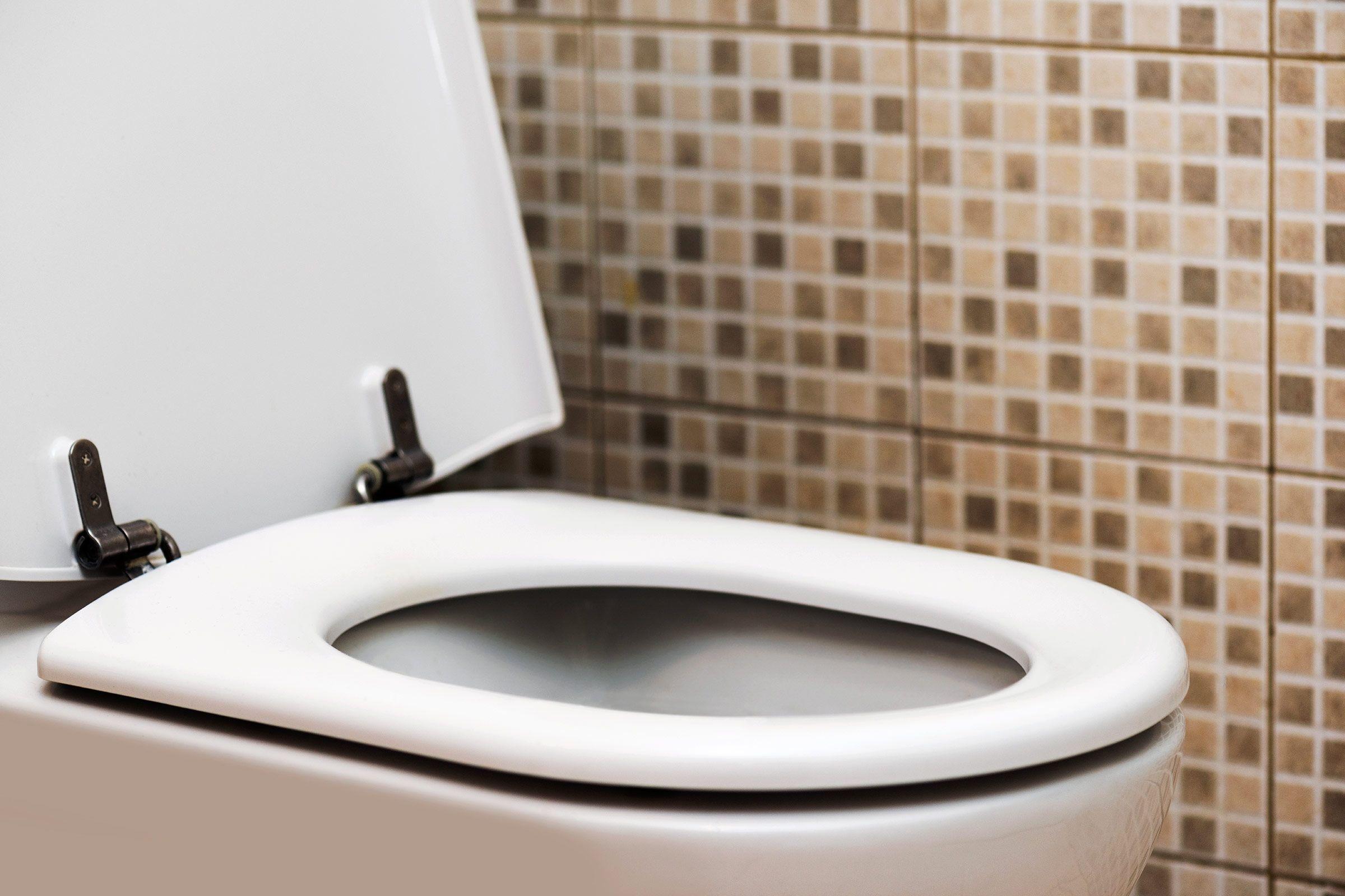 Musty Smell From Bathroom Sink Bathroom Exclusiv Pinterest Sinks - Musty smell in bathroom