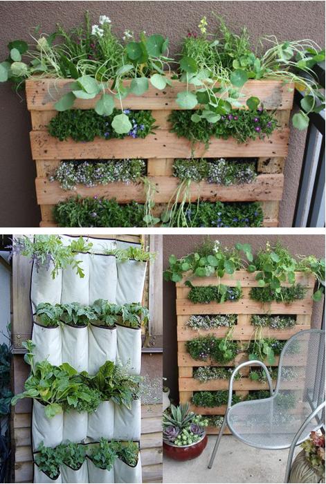 Kleine tuin ideeen foto 39 s google zoeken schaduwborder for Ideeen kleine tuin
