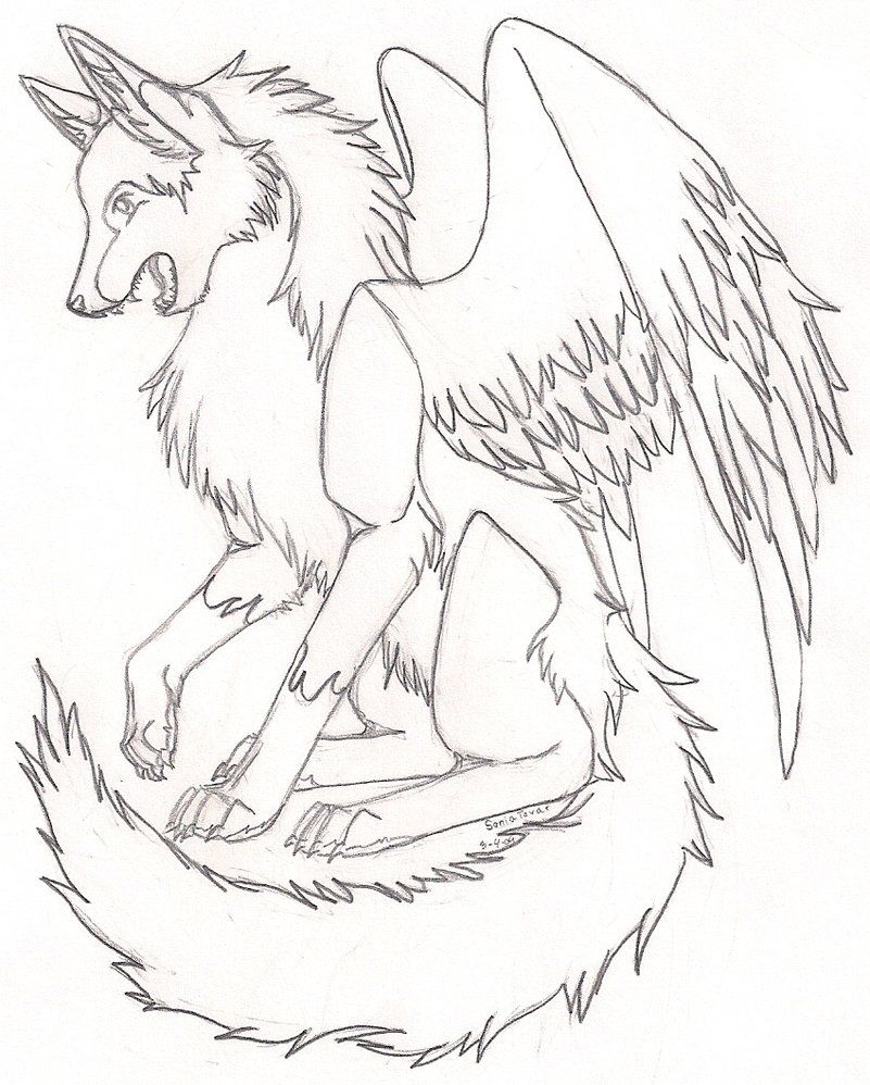Anime Wolf Coloring Pages : anime, coloring, pages, Another, Winged, Colors,, Anime, Drawing,, Drawings