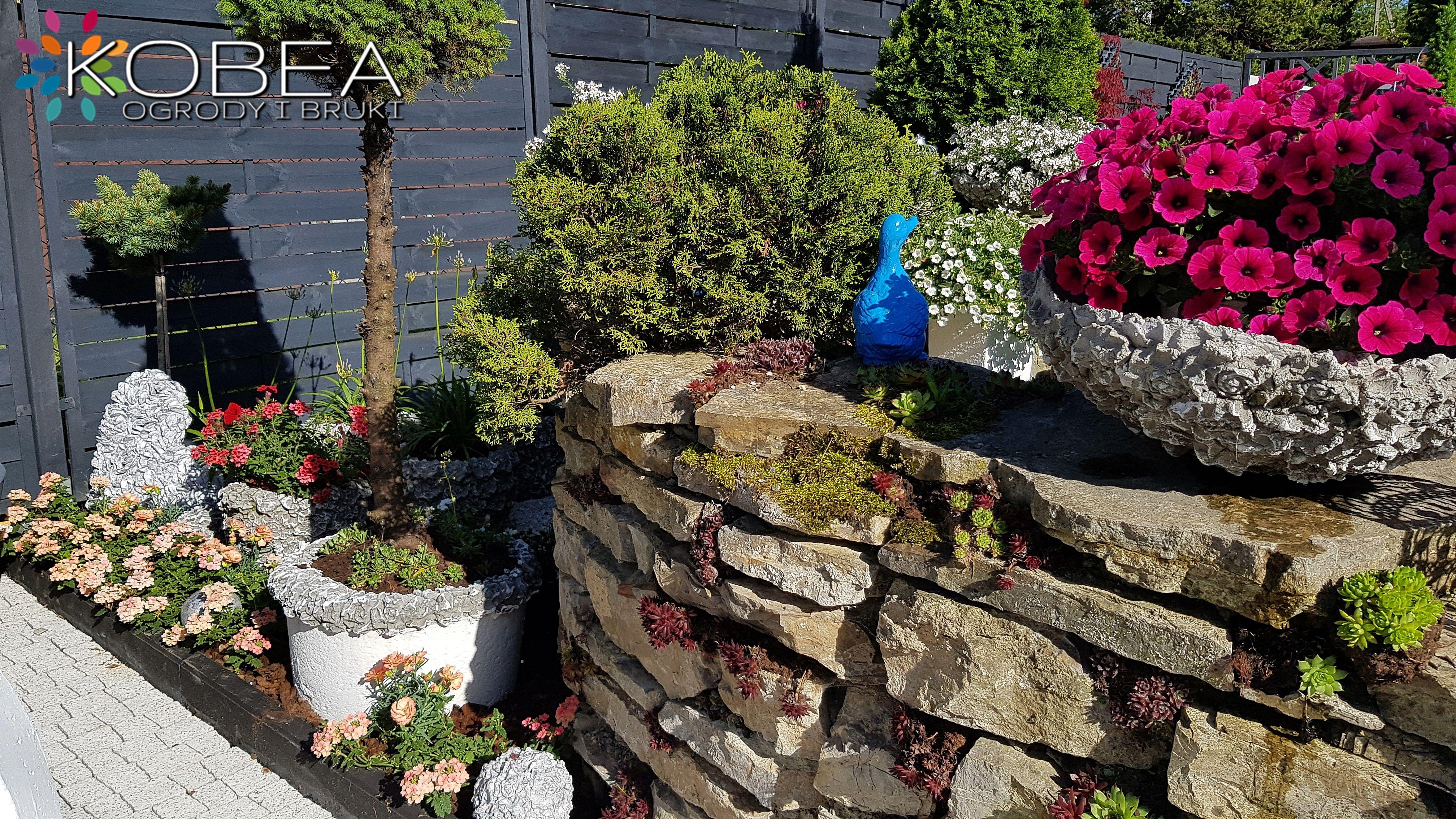 Dekoracje I Ozdoby Do Ogrodu Kobeaogrodyibruki Plants Sidewalk