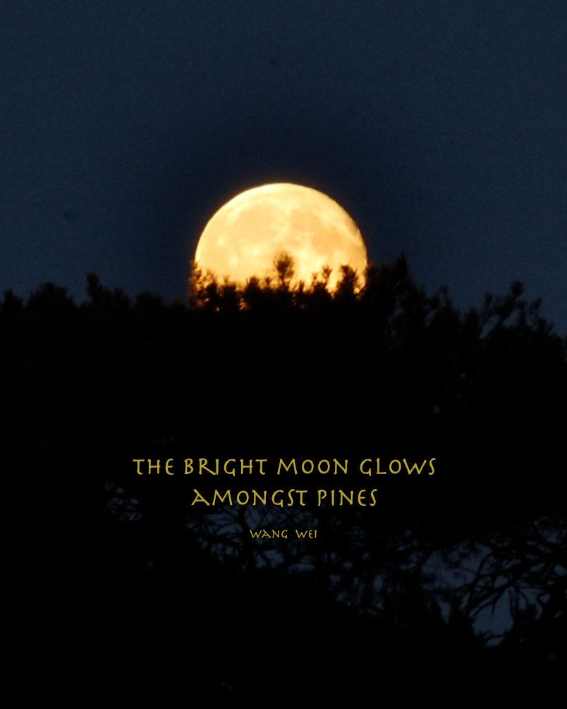 Full Moon Quotes The Bright Moon Glows Amongst Pines By Wang Wei Full Moon Quotes Moon Quotes Picture Quotes