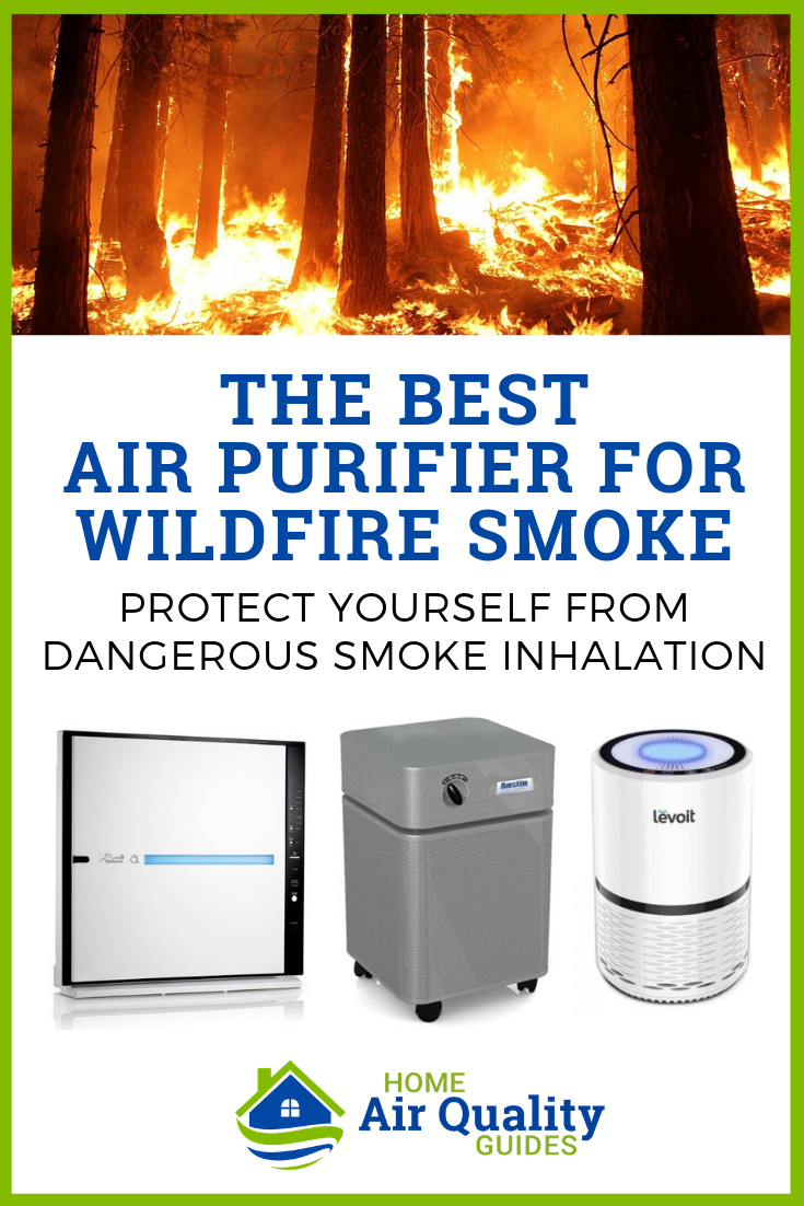 Best Air Purifiers for Wildfire Smoke and Forest Fires
