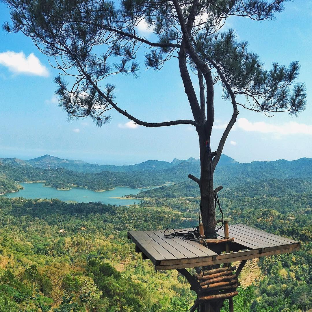 Wisata Alam Kalibiru Di Kulonprogo Di Yogyakarta
