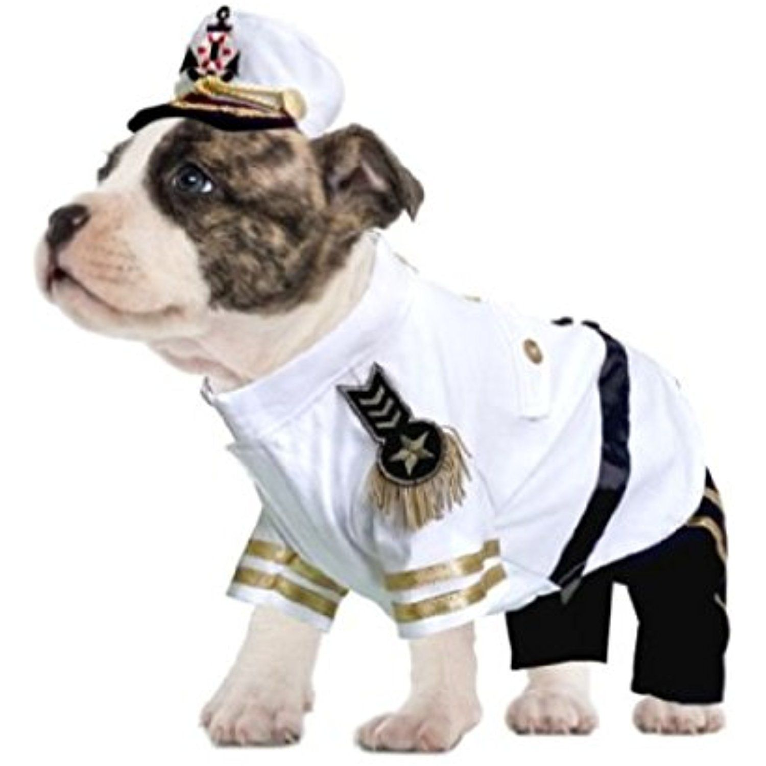 Yacht Admiral Costume For Dogs Authentic Detail Navy Sailor