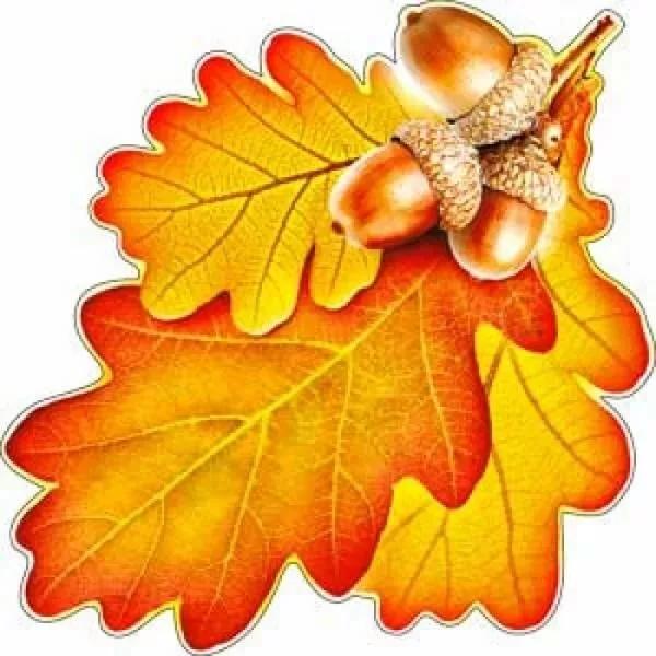 10 мелких не цветных листочков в ряд картинка для детей: 8 ...