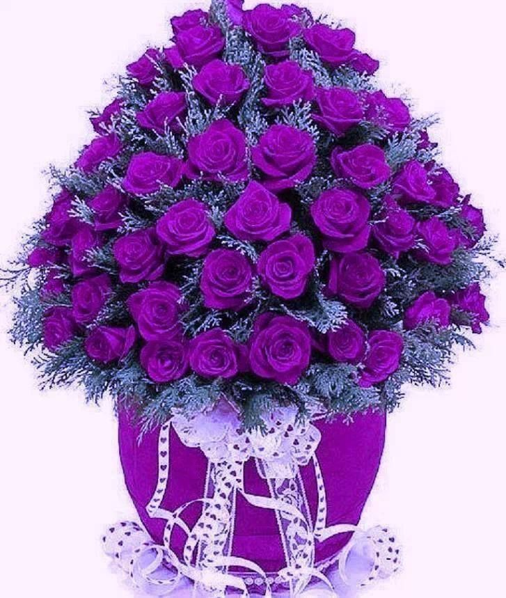 This Is An Amazing Bouquet Purple Roses Purple Flowers All