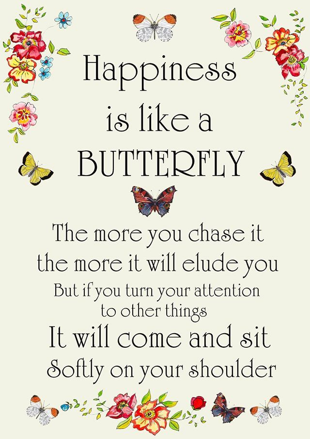 Happiness Is Like A Butterflyby Canvasbutterfly Butterfly Lover