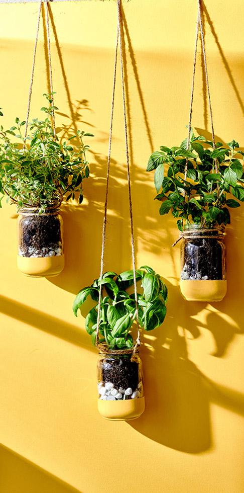diy hanging herb garden in 2020 on indoor herb garden diy wall mason jars id=58263