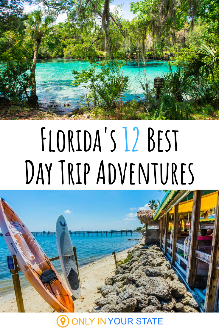 12 Unforgettable Florida Day Trips One For Each Month Of The Year Day Trips Family Spring Break Vacations Trip