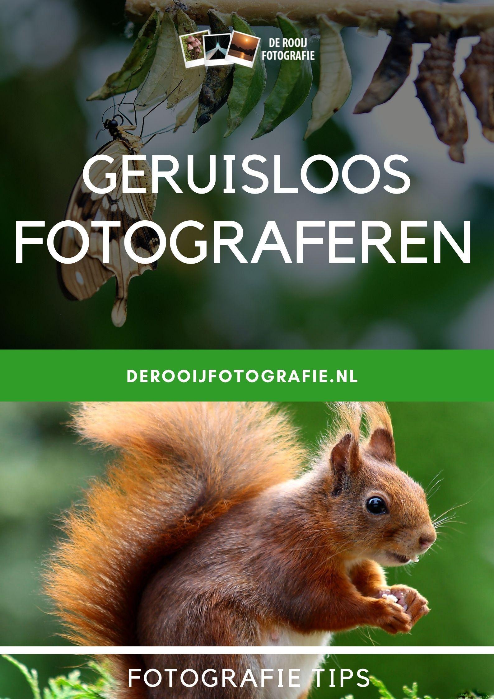 Fotograferen Zonder Geluid Te Maken De Rooij Fotografie Fotografie Portretfotografie Fotobewerking