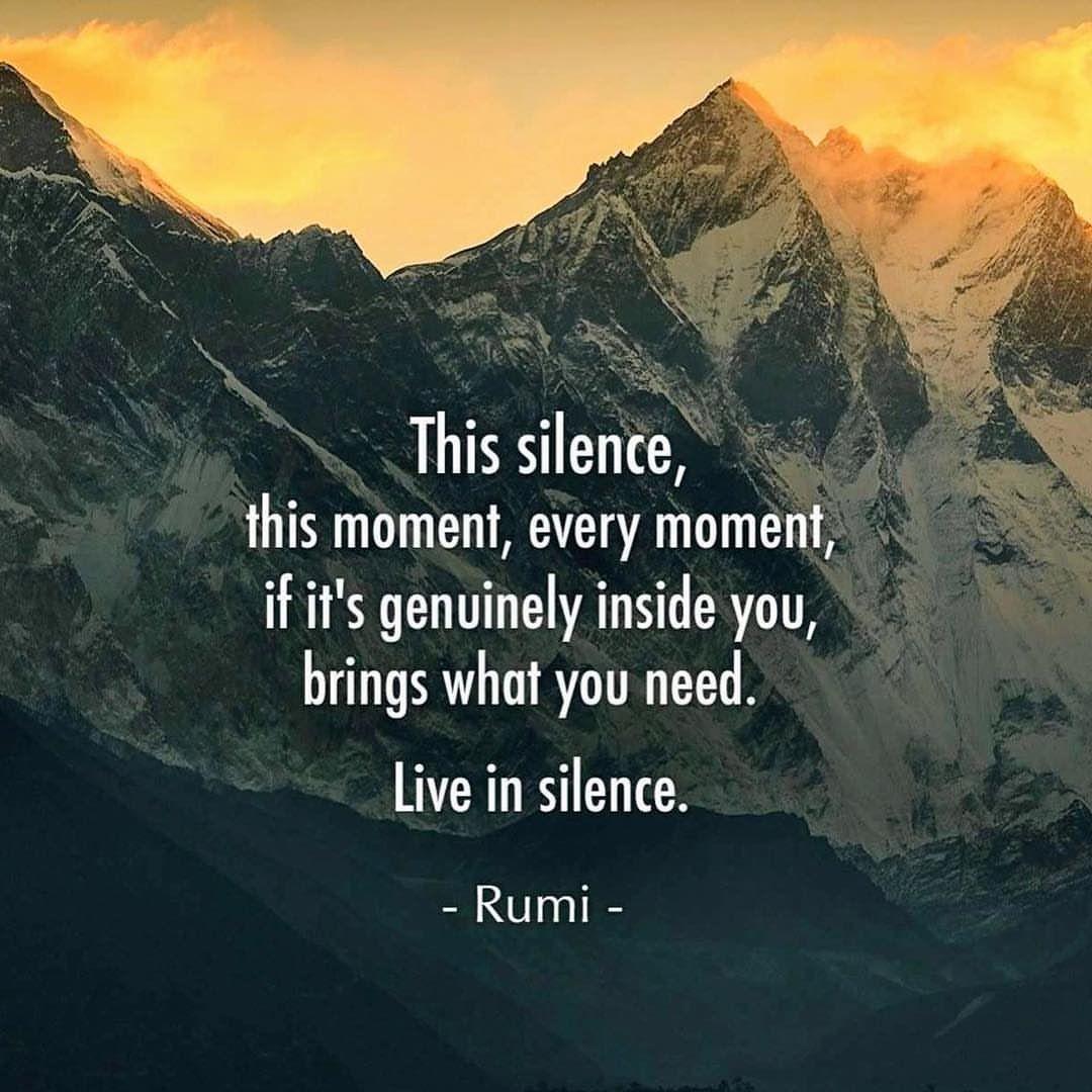 علم کی ابتدا ہے ہنگامہ۔۔۔۔۔ علم کی انتہا ہے خاموشی
