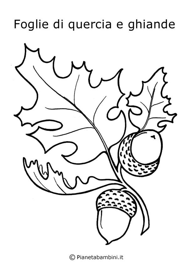 abbastanza Ghiande e foglie di quercia | Foglie | Pinterest | Foglie di  MG14