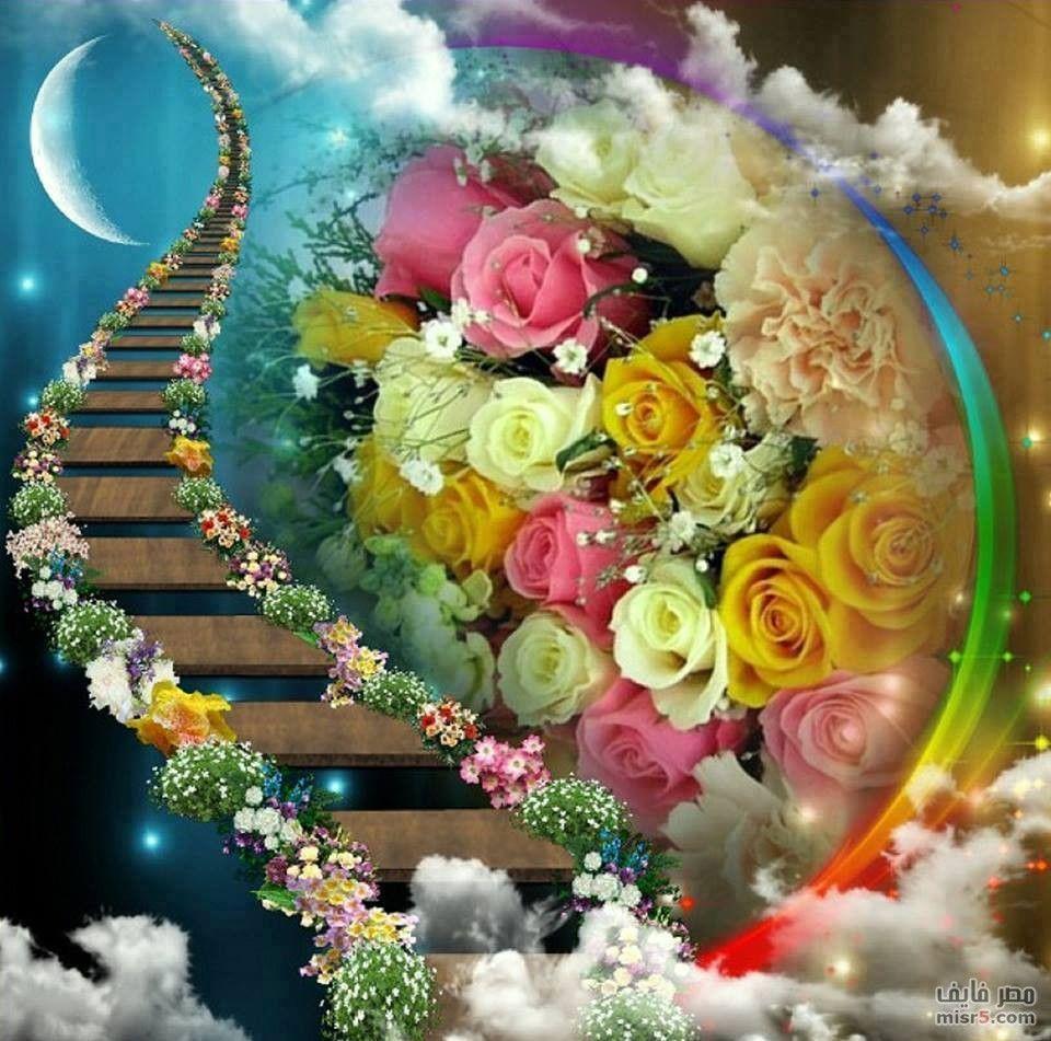 صور ورد وقلوب بوستات حب و رومانسية للفيس بوك Beautiful Gif Flowers Gif Beautiful Flowers