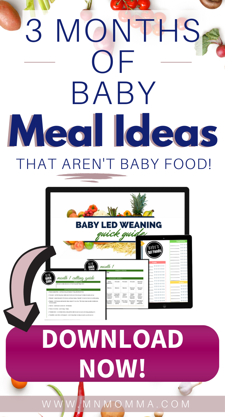 Baby Led Weaning Meal Ideas for First Foods (For Baby's 6-9 Months Old)