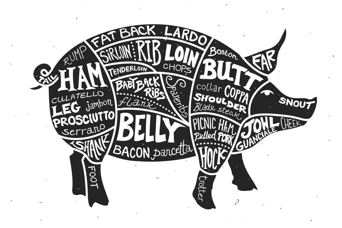 hight resolution of labeled cuts of meat pig by ramsey creative on creativemarket